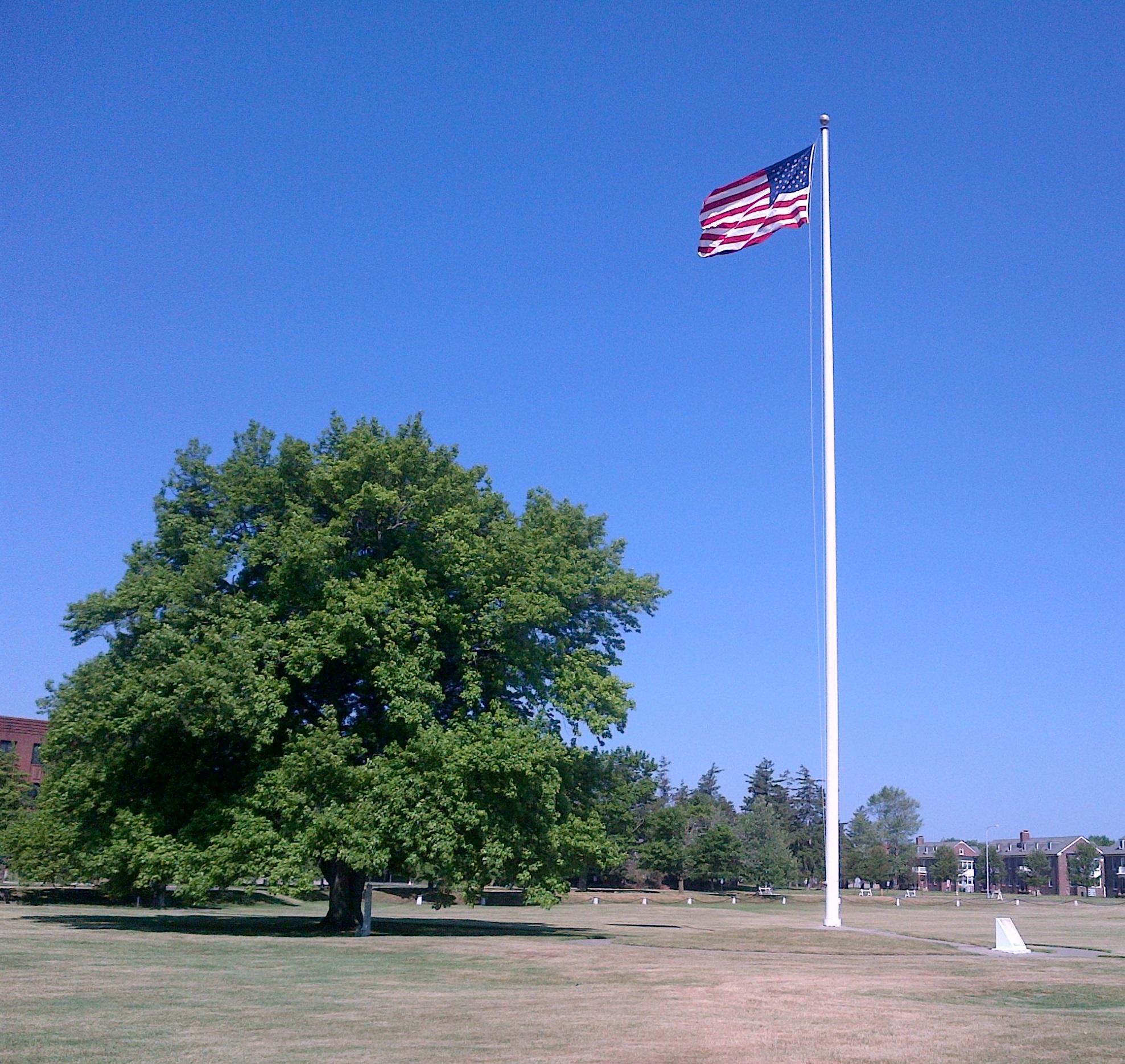 Flag Day (7) (2)